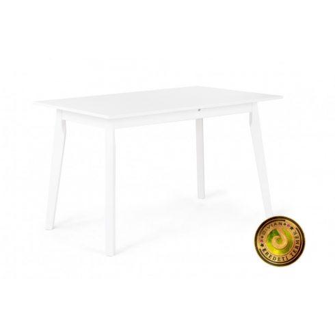 Anita étkezőasztal 120 x 80 cm