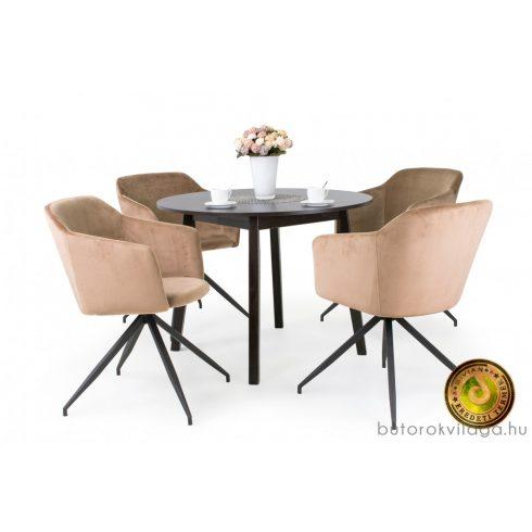 Anita asztal + 4 db Charlotte szék